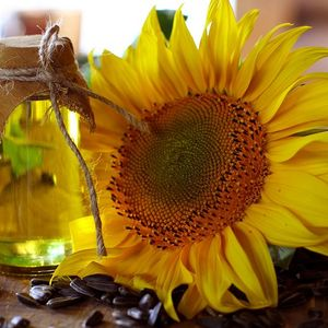 Medium 1000px sunflower oil and sunflower