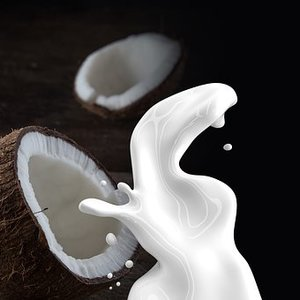 Medium coconut milk 1623611  340