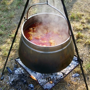 Medium kettle goulash 1645207 960 720