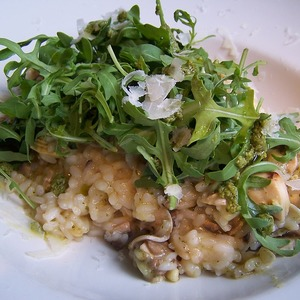 Medium risotto 1328867 960 720